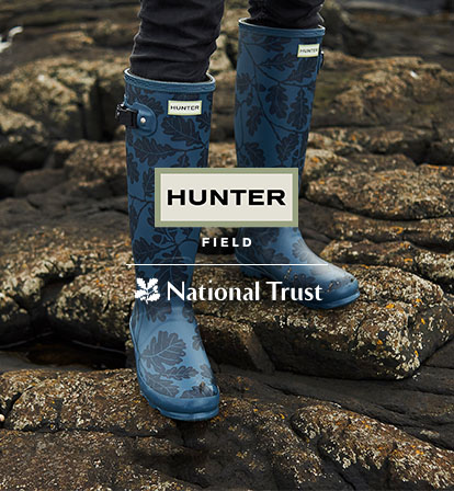 Hunter The National Trust Collection