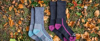 Two pairs of socks on the grass and leaves