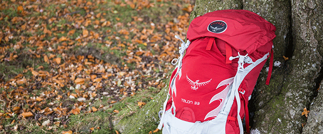 Red and white rucksack leaning against a tree trunk